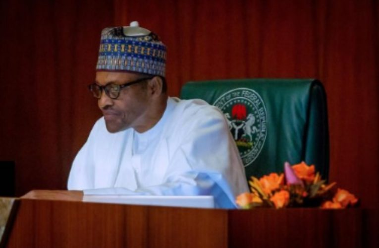 President Buhari's New 850 Billion Naira Loan, The Trouble That Lies Ahead