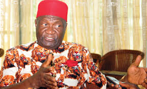 Ohanaeze, IPOB Fighting Same Cause, Different Approaches – Nwodo